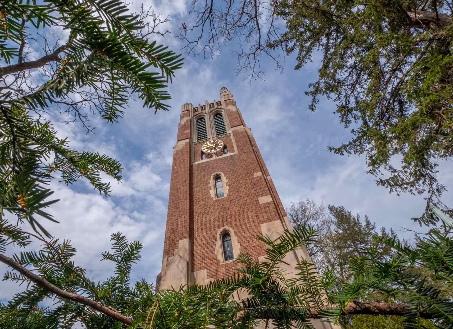 Beaumont Tower on a summer day