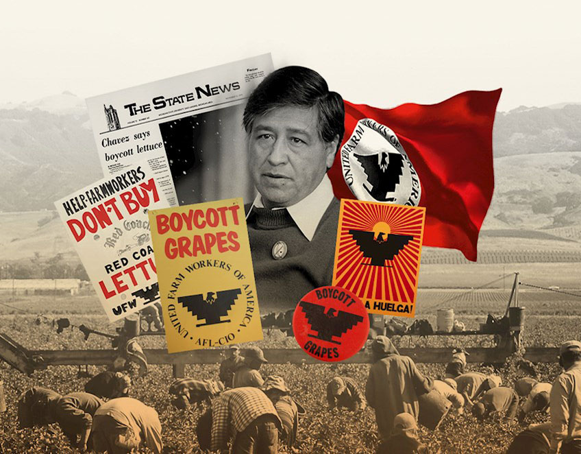 Cesar Chavez illustration
